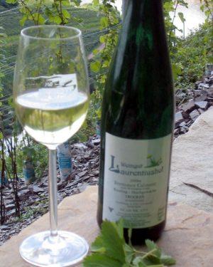 Der Wein im Calmont