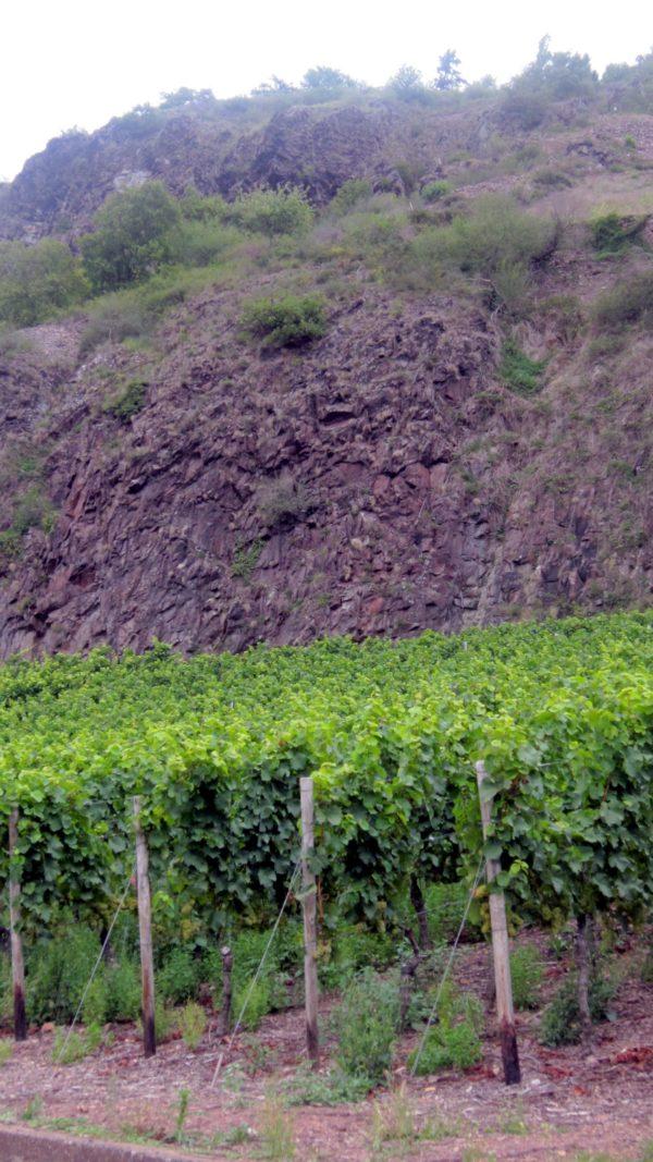 Lava und Wein