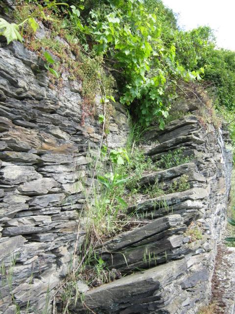 Steile Treppen am Mittelrhein