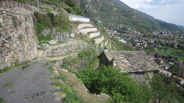 Was passiert wenn man Terrasen in Steillagen vernachlässigt: Die neuen terrasen iim Hintergrund wurden gebaut weil die alten, nicht mehr gepflegten Terrasen abgerutscht waren und die Strasse gleich mit... teuer !