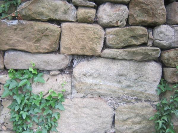 Trockenmauer am Disibodenberg