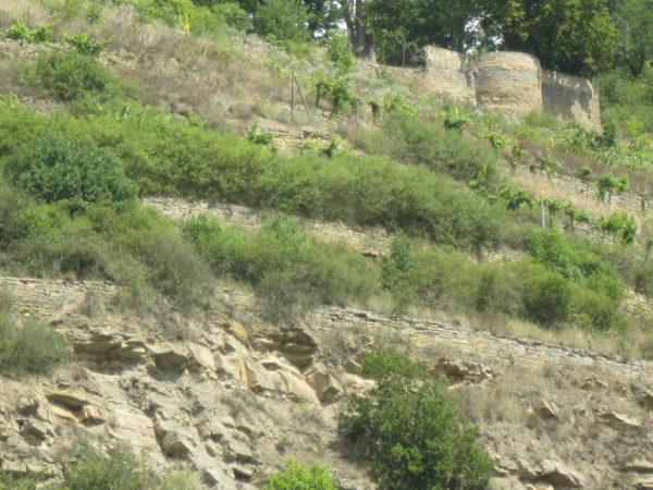 Disibodenberg an der Nahe