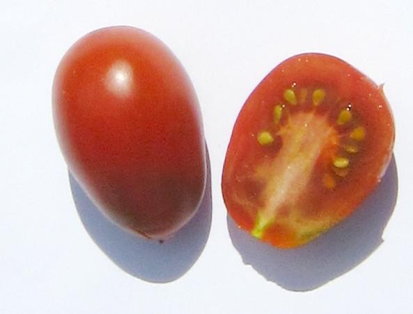 red_plum