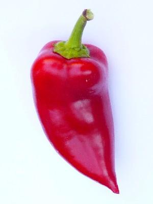 Paprika Deutsch