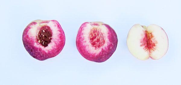 Roter und weisser Pfirsich im Vergleich